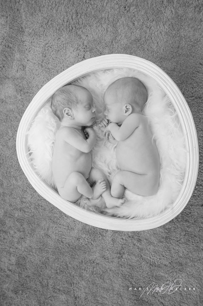 Photo nouveaux-nés jumeaux Eischen Luxembourg - Marie De Decker